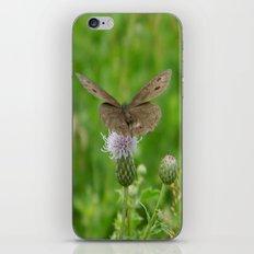 Takeoff iPhone & iPod Skin