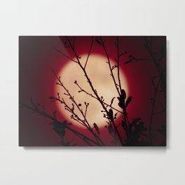 Red Red Moon Wine Metal Print