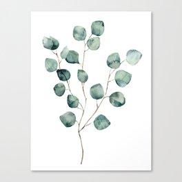 Eucalyptus One Canvas Print
