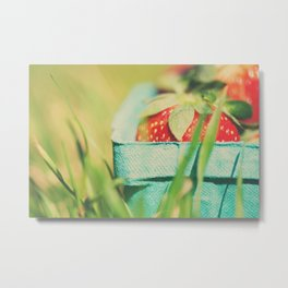 strawberry fields forever ... Metal Print