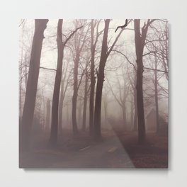 The house in the fog... Metal Print