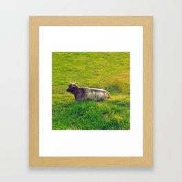 Cattle Framed Art Print