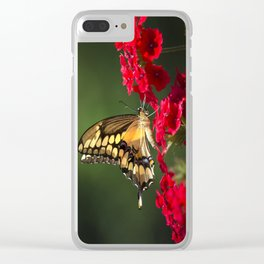 Giant Swallowtail Butterfly Clear iPhone Case