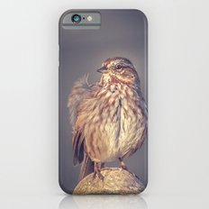 Song Sparrow Slim Case iPhone 6s