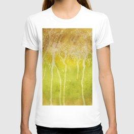 Abstract No. 213 T-shirt