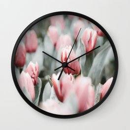 Frosted Tulips Wall Clock