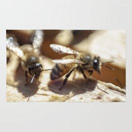 2 Bee or Not 2 Bee Rug