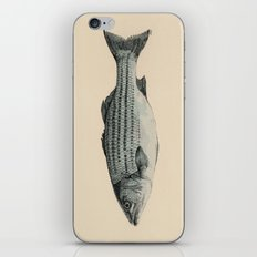 A Fish iPhone & iPod Skin