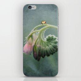 Do Ladybirds sleep at night? iPhone Skin