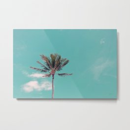 Untitled (Kapaa Palm Tree) Metal Print