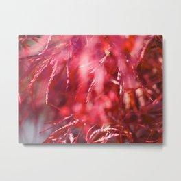 Crimson Glow  Metal Print