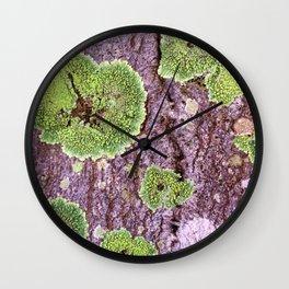 Tree Bark Pattern with Lichen #7 Wall Clock