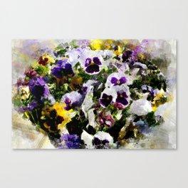 Viola tricolor Canvas Print