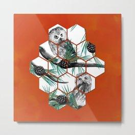 Cube Northern Saw-whet Owl Metal Print