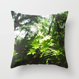 Light Shines through the Forest Throw Pillow