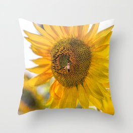 Bold Sunflower with Bee Throw Pillow