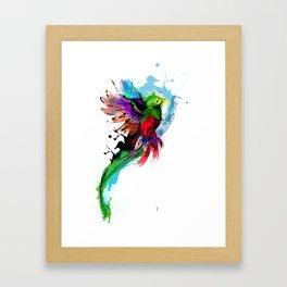 Watercolor Quetzal  Framed Art Print