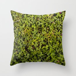 Any Luck? Throw Pillow