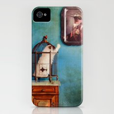 Ambroise iPhone (4, 4s) Slim Case