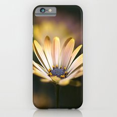 daisies in a row. iPhone 6s Slim Case