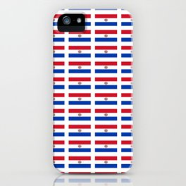 flag of paraguay 2 -paraguyan,asuncion,spanish, south america, latin america,pan flute,coffee,forest iPhone Case
