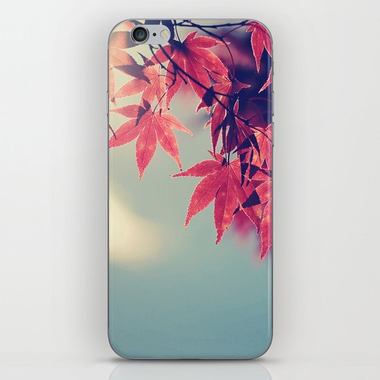 Maple Light iPhone & iPod Skin