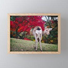 Deer in Nara Park Fine Art Print  • Travel Photography • Wall Art Framed Mini Art Print
