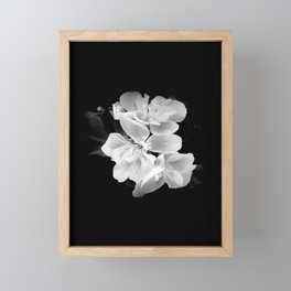 geranium in bw Framed Mini Art Print