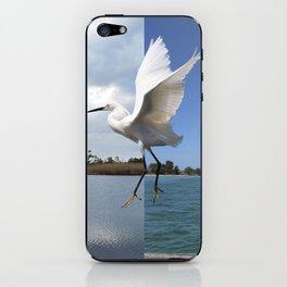 Flight iPhone Skin
