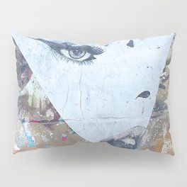 Not Every Succesful Woman is in the Illuminati Pillow Sham