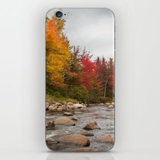 Autumn Creek iPhone & iPod Skin
