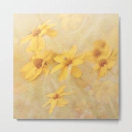Dreamy Yellow Coreopsis Metal Print