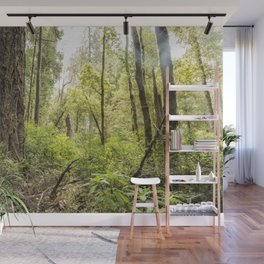 Schrader Old Growth Forest Wall Mural