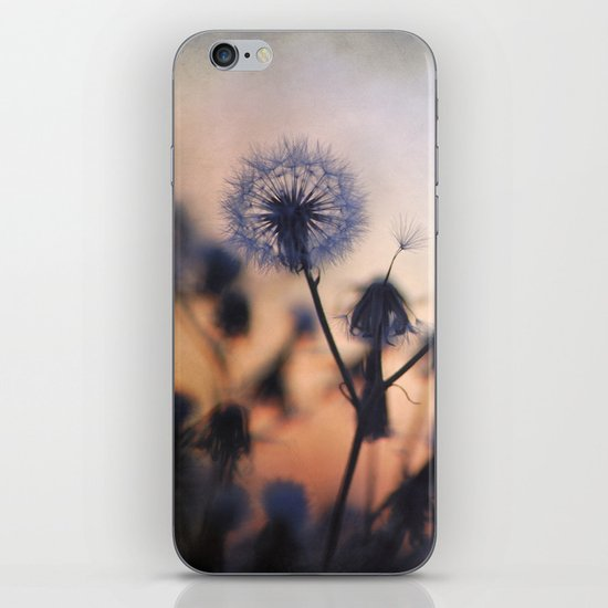 Sunset stars iPhone & iPod Skin