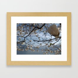 Swiss Riviera Lakeside II Framed Art Print