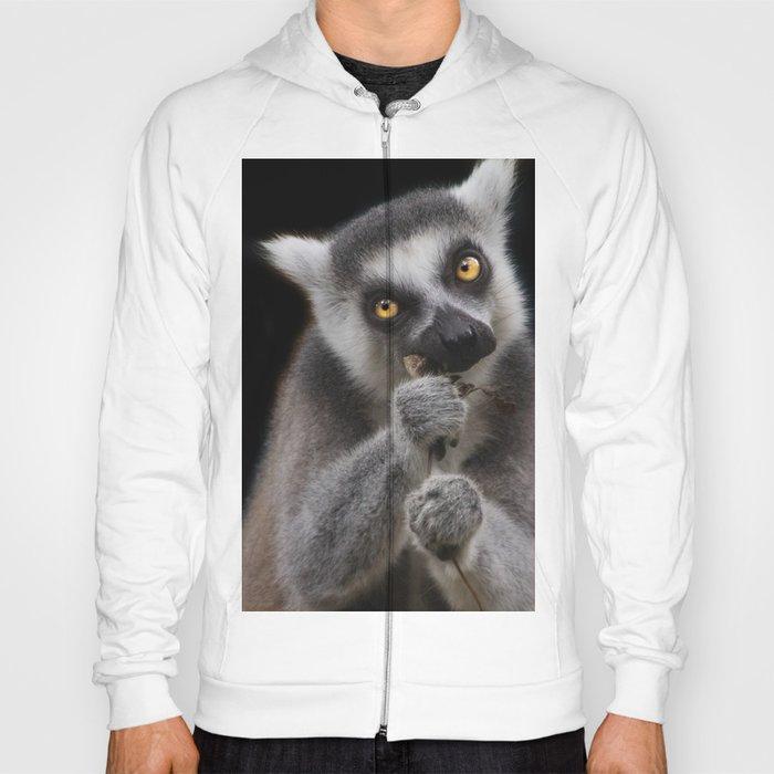 Lemur eating Hoody