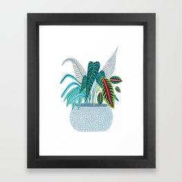 Jungle in a Pot Framed Art Print