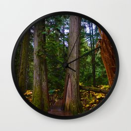 Giant Cedars Boardwalk in Revelstoke BC, Canada Wall Clock