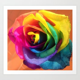 One Rainbow Rose For You Art Print