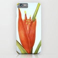 II. Vintage Flowers Botanical Print by Pierre-Joseph Redouté - Tropical Slim Case iPhone 6s