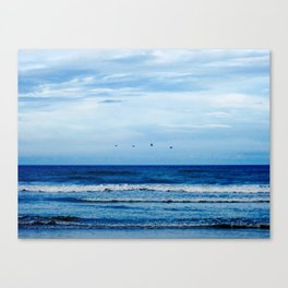 The Birds and the Seas Canvas Print