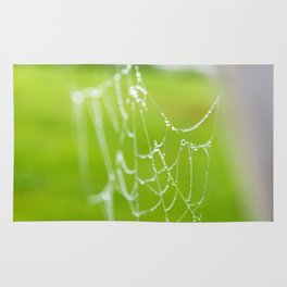 Spiderweb with drops Rug