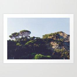 Monterosso trees Art Print