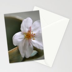 SAKURA AND A TINY TEACUP Stationery Cards