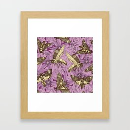 Death's-head hawkmoth purple Framed Art Print