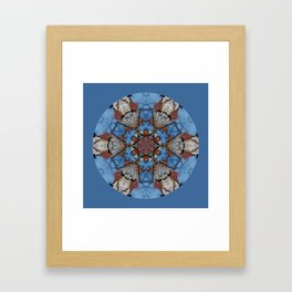 Blue sky and birch bark Framed Art Print