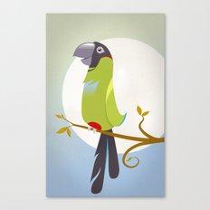 Nanday Conure Canvas Print