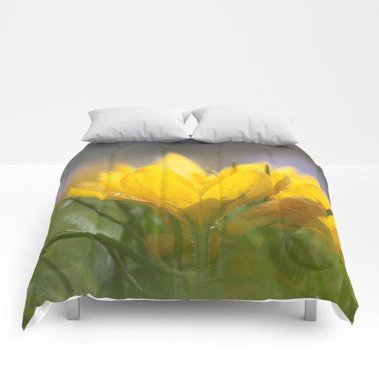 Yellow wet crocus at backlight Comforters