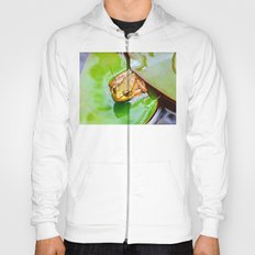 Frog on a Lily-pad Hoody