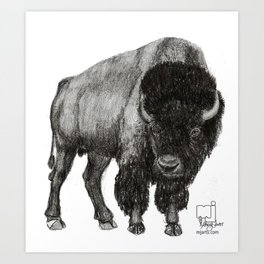 bison 3 Art Print